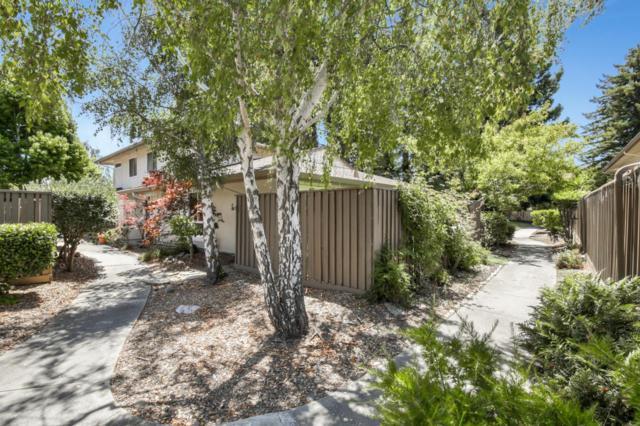 163 Palo Verde Ter, Santa Cruz, CA 95060 (#ML81761372) :: Keller Williams - The Rose Group