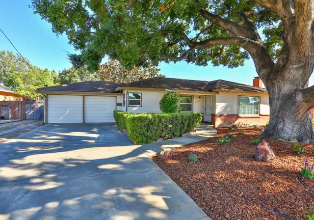 14960 Joanne Ave, San Jose, CA 95127 (#ML81761446) :: Maxreal Cupertino