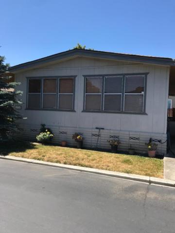 486 Chateau La Salle 486, San Jose, CA 95111 (#ML81761475) :: Maxreal Cupertino