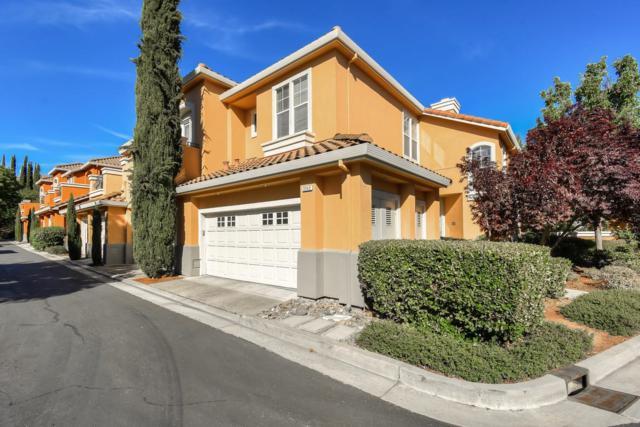 2242 Silver Blossom Ct, San Jose, CA 95138 (#ML81761525) :: Strock Real Estate