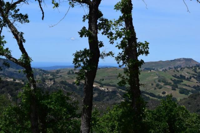 13 Long Ridge Trl, Carmel, CA 93923 (#ML81762228) :: RE/MAX Real Estate Services
