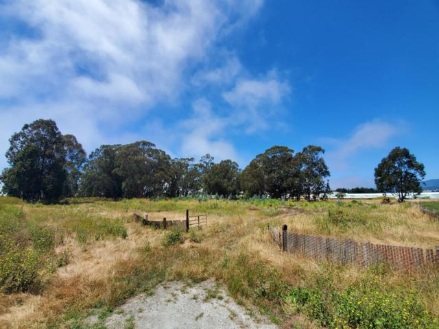 0 Van Ness Ave, Half Moon Bay, CA 94019 (#ML81762307) :: Intero Real Estate
