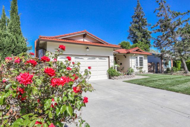 910 San Marcos Cir, Mountain View, CA 94043 (#ML81762805) :: RE/MAX Real Estate Services