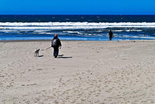 Address Not Disclosed, La Selva Beach, CA 95076 (#ML81763170) :: Strock Real Estate