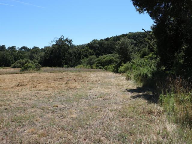 34222 Robinson Canyon Rd, Carmel, CA 93923 (#ML81763225) :: RE/MAX Real Estate Services