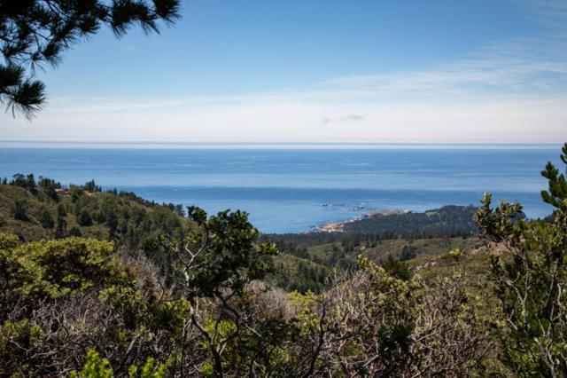 3400 Red Wolf Dr, Carmel, CA 93923 (#ML81763516) :: Strock Real Estate