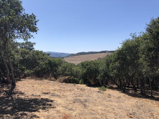 11721 Camino Escondido Rd, Carmel Valley, CA 93924 (#ML81764210) :: The Goss Real Estate Group, Keller Williams Bay Area Estates