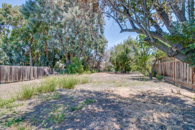 173 Escuela Ave, Mountain View, CA 94040 (#ML81764554) :: RE/MAX Real Estate Services
