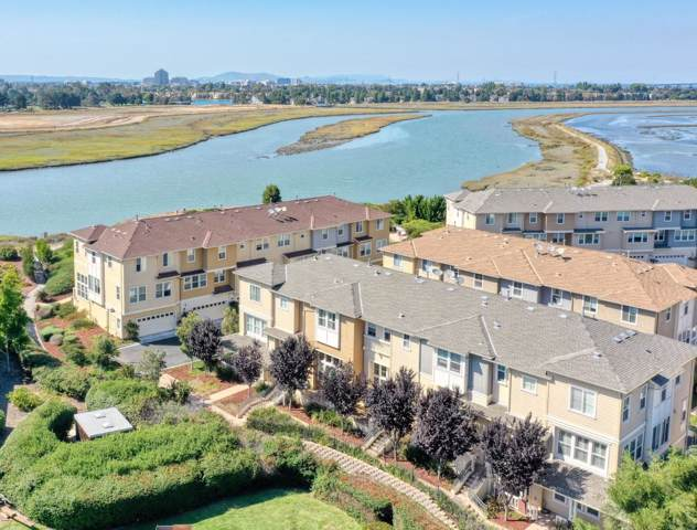 210 Pickleweed Ln, Redwood Shores, CA 94065 (#ML81768432) :: Intero Real Estate