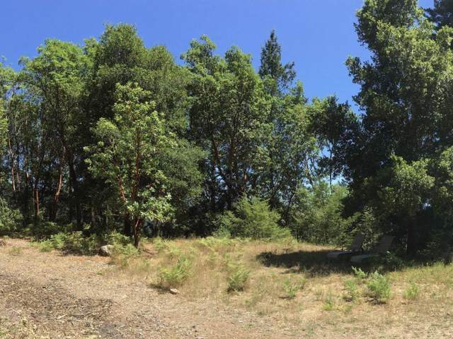 Bohnen Rd, Santa Cruz, CA 95065 (#ML81768545) :: Strock Real Estate