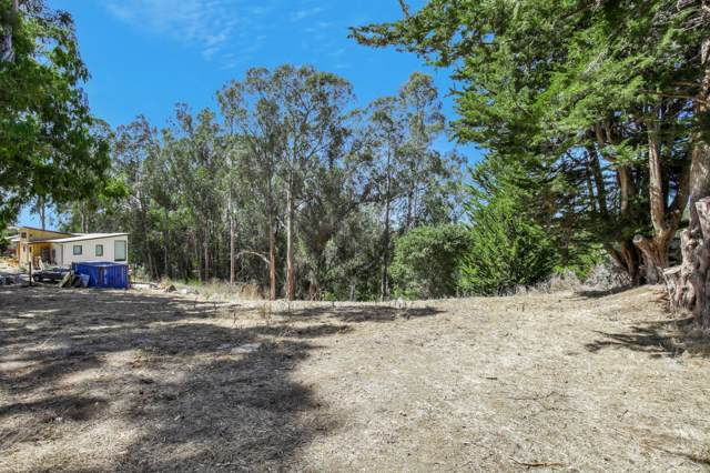 799 Western Dr, Santa Cruz, CA 95060 (#ML81768594) :: The Sean Cooper Real Estate Group