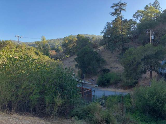 00 El Vananda, Redwood City, CA 94062 (#ML81768811) :: The Realty Society