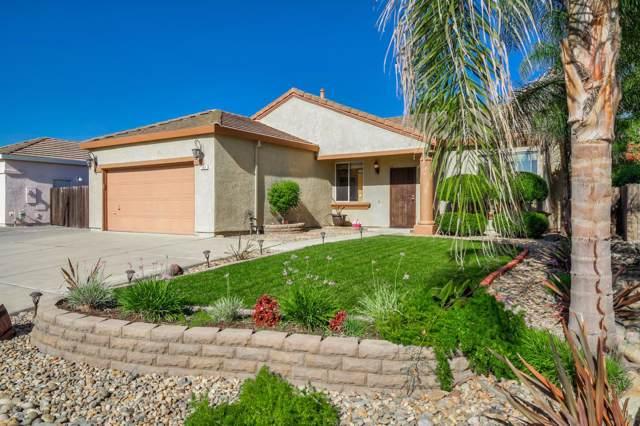 345 Lakespring Pl, Oakley, CA 94561 (#ML81769088) :: The Goss Real Estate Group, Keller Williams Bay Area Estates