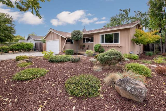 1377 Darryl Dr, San Jose, CA 95130 (#ML81769283) :: The Goss Real Estate Group, Keller Williams Bay Area Estates