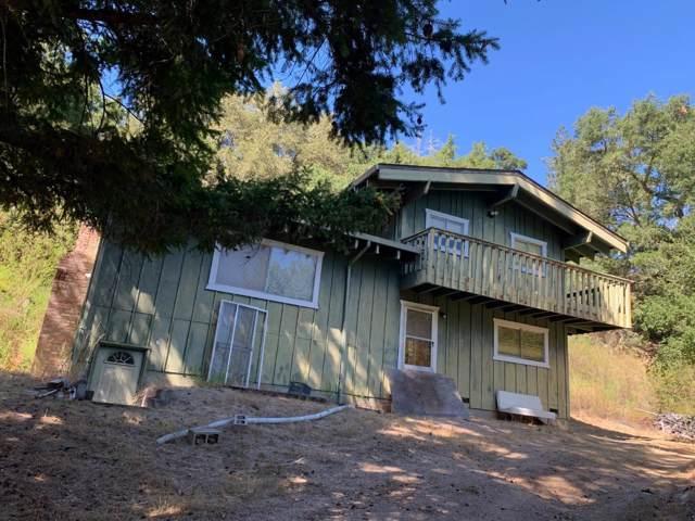 1030 Chaparral Rd, Boulder Creek, CA 95006 (#ML81769496) :: RE/MAX Real Estate Services