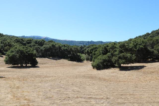 5 Corral Run, Carmel, CA 93923 (#ML81769777) :: The Gilmartin Group