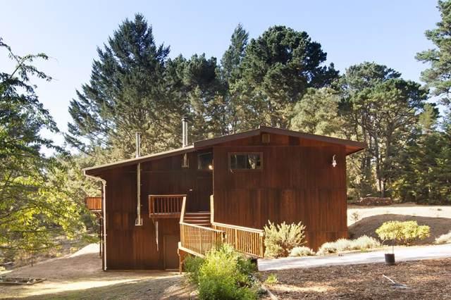 56 Big Tree Rd, Woodside, CA 94062 (#ML81770461) :: Maxreal Cupertino