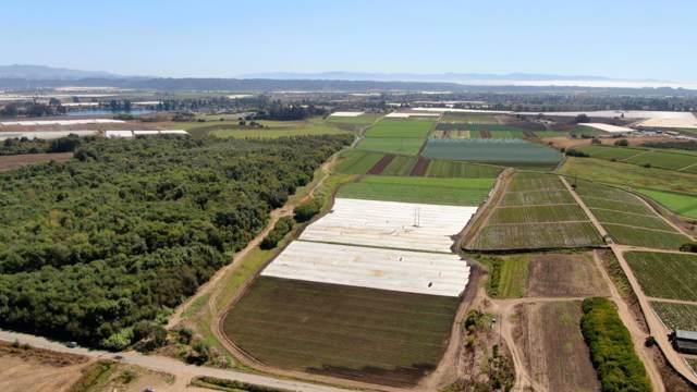 0 Paulsen, Watsonville, CA 95076 (#ML81770847) :: Strock Real Estate