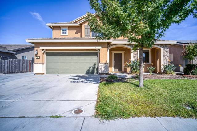 351 Catmint St, Manteca, CA 95337 (#ML81771974) :: The Sean Cooper Real Estate Group