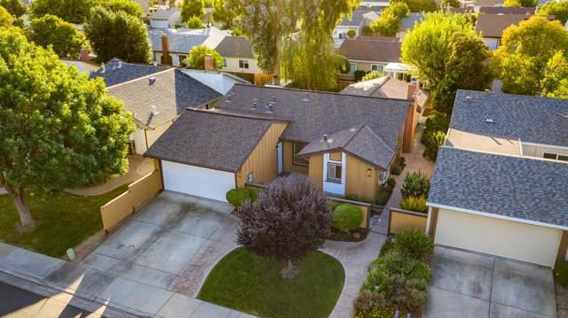 5343 Beech Grove Ct, San Jose, CA 95123 (#ML81771986) :: Maxreal Cupertino