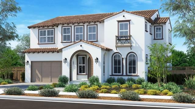 3739 Darshan Ct, San Jose, CA 95148 (#ML81772084) :: RE/MAX Real Estate Services