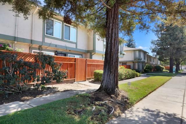 641 Balfour Dr, San Jose, CA 95111 (#ML81772236) :: The Sean Cooper Real Estate Group