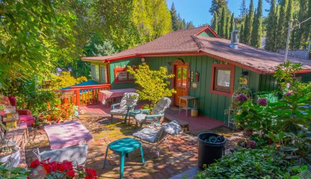 13 Mound Ave, Mount Hermon, CA 95041 (#ML81772396) :: Maxreal Cupertino