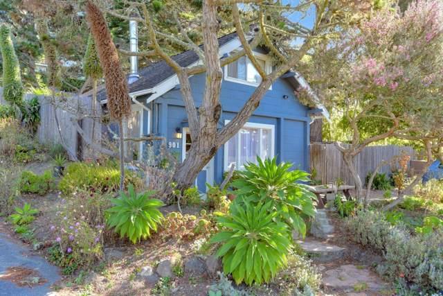 901 Etheldore St, Moss Beach, CA 94038 (#ML81772471) :: The Kulda Real Estate Group