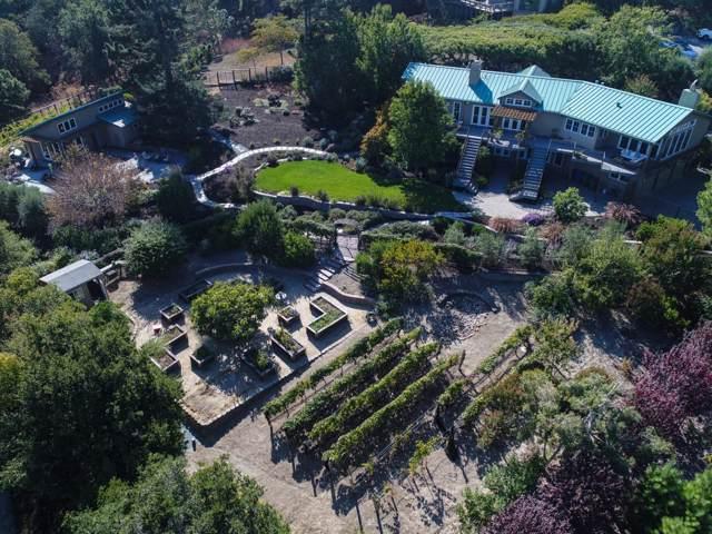 12840 Lucero Ln, Los Altos Hills, CA 94022 (#ML81772745) :: The Kulda Real Estate Group