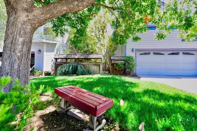 2946 Del Loma Dr, Campbell, CA 95008 (#ML81774840) :: Brett Jennings Real Estate Experts
