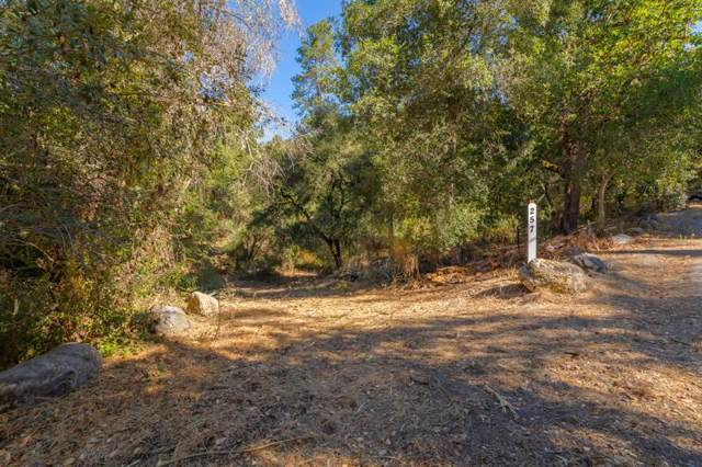 957 Zayante School, Felton, CA 95018 (#ML81775117) :: The Sean Cooper Real Estate Group