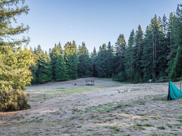 765 Haines Ranch Rd, Watsonville, CA 95076 (#ML81775178) :: The Realty Society