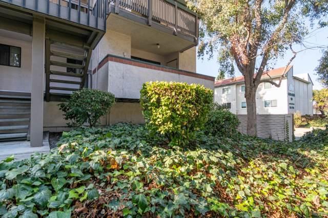 704 San Conrado Ter 1, Sunnyvale, CA 94085 (#ML81775238) :: Schneider Estates