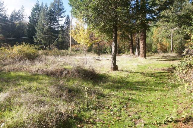 171 Conner Creek Rd, Junction City, CA 96048 (#ML81775380) :: The Goss Real Estate Group, Keller Williams Bay Area Estates