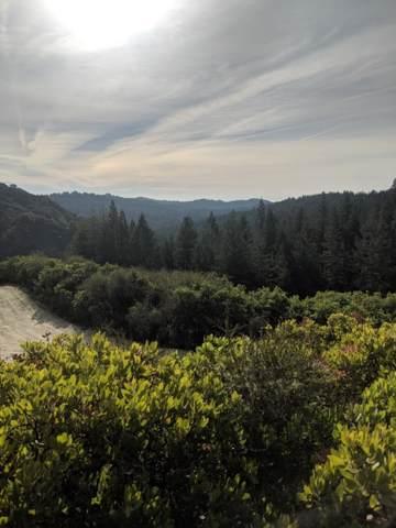 Amber Ridge Loop, Boulder Creek, CA 95006 (#ML81775623) :: Maxreal Cupertino