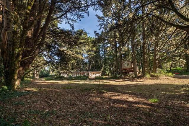 12180 Skyline Blvd, Woodside, CA 94062 (#ML81775685) :: The Goss Real Estate Group, Keller Williams Bay Area Estates