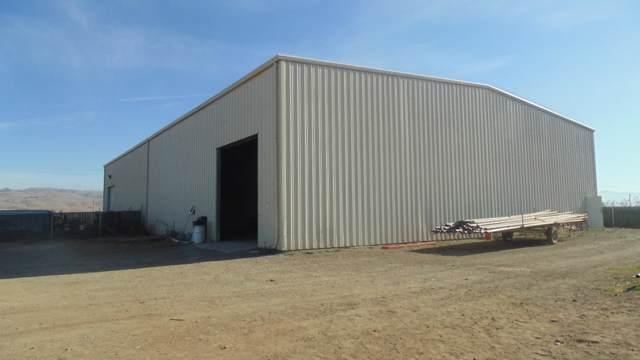 9004 Frazier Lake Rd, Hollister, CA 95023 (#ML81776001) :: The Kulda Real Estate Group