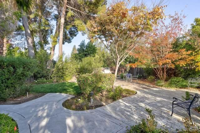 509 Sierra Vista Ave 15, Mountain View, CA 94043 (#ML81776029) :: Keller Williams - The Rose Group