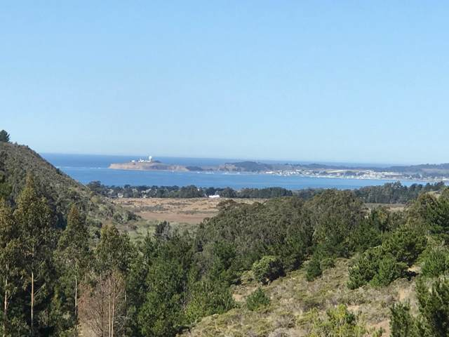 2165 Higgins Canyon Rd, Half Moon Bay, CA 94019 (#ML81776553) :: The Kulda Real Estate Group