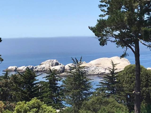 246 Highway 1, Carmel, CA 93923 (#ML81776889) :: Alex Brant Properties