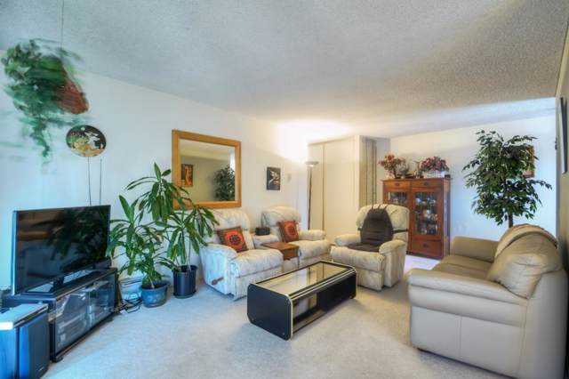 1135 Reed Ave D, Sunnyvale, CA 94086 (#ML81776998) :: The Sean Cooper Real Estate Group