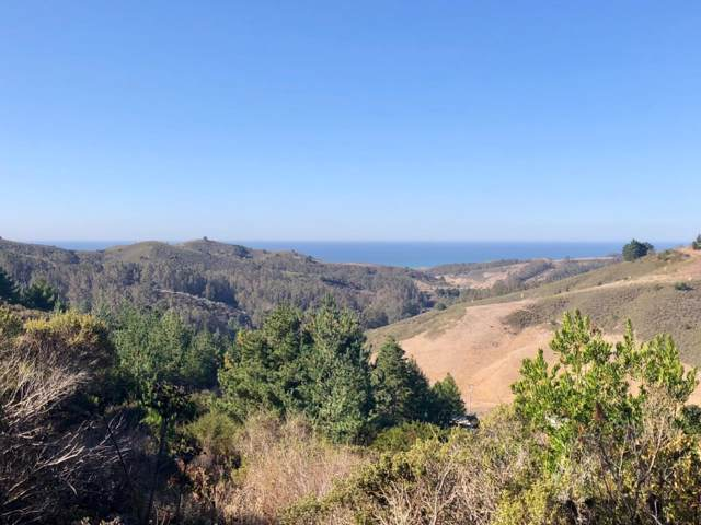000 Higgins Canyon Rd, Half Moon Bay, CA 94019 (#ML81777010) :: The Realty Society