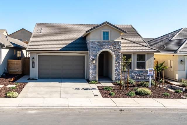 1635 Goldenstar Ct, Hollister, CA 95023 (#ML81777325) :: The Kulda Real Estate Group