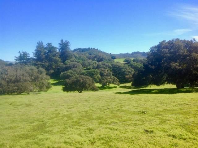 8330 Vista Monterra, Monterey, CA 93940 (#ML81777417) :: RE/MAX Real Estate Services