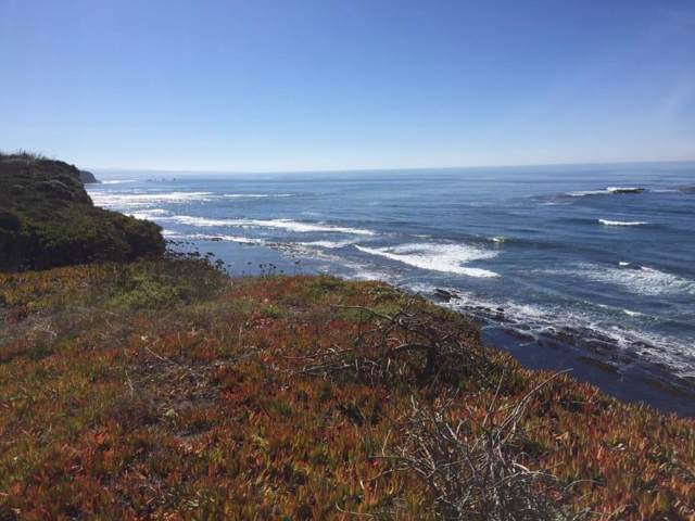 888 Ocean Blvd, Moss Beach, CA 94038 (#ML81779082) :: The Kulda Real Estate Group