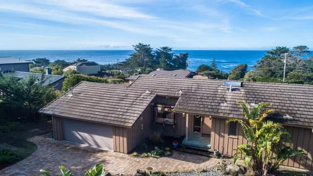 161 Carmel Riviera Dr, Carmel, CA 93923 (#ML81780156) :: The Kulda Real Estate Group