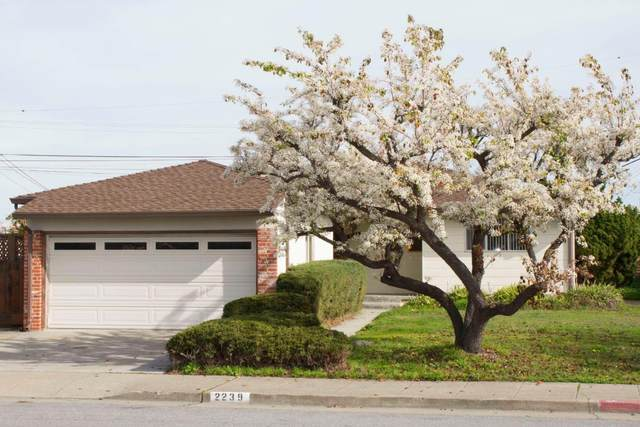 2239 Bermuda Dr, San Mateo, CA 94403 (#ML81781780) :: RE/MAX Real Estate Services