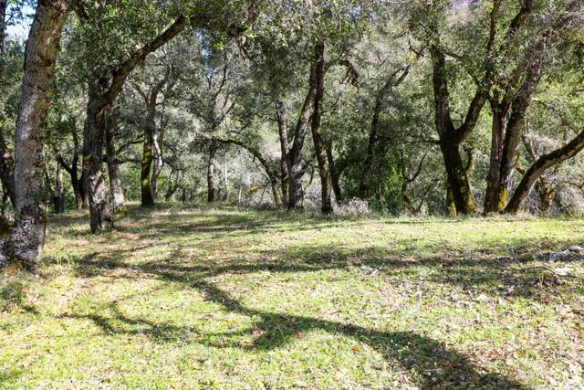 35000 Robinson Canyon Rd, Carmel, CA 93923 (#ML81781845) :: The Gilmartin Group