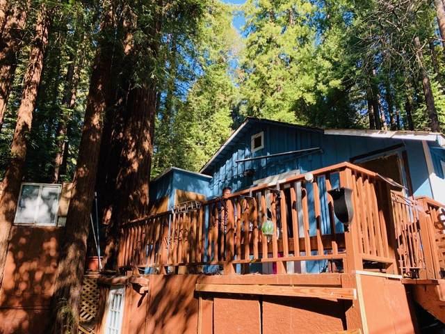 101 Annies Way, Brookdale, CA 95007 (#ML81782211) :: Alex Brant Properties