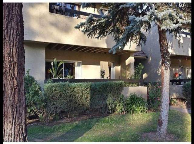 307 Tradewinds Dr 1, San Jose, CA 95123 (#ML81782558) :: Live Play Silicon Valley